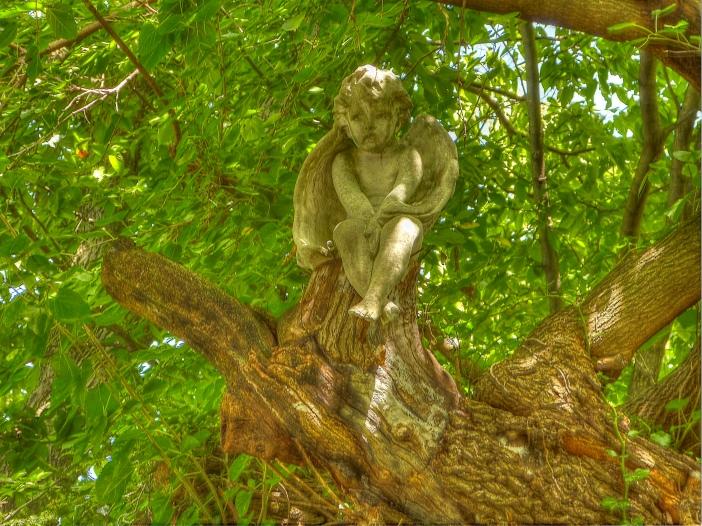 Angel in tree