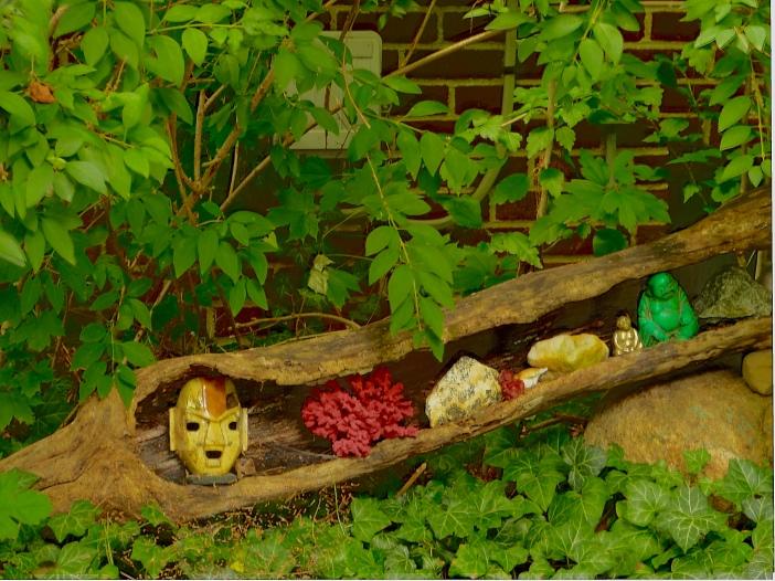 Creatures in log